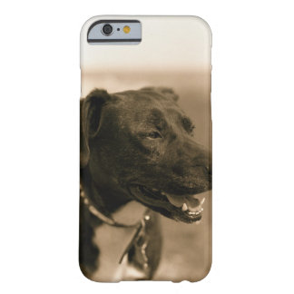 Portrait of Dog Outdoors Barely There iPhone 6 Case