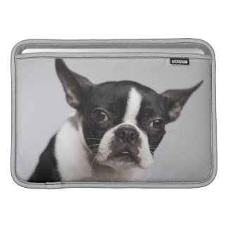 Portrait of dog sleeve for MacBook air