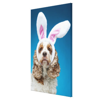 Portrait of dog wearing Easter bunny ears Canvas Print