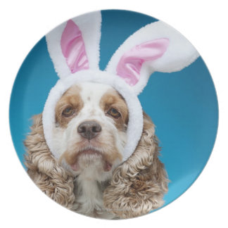 Portrait of dog wearing Easter bunny ears Plate