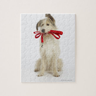 Portrait of Dog with Leash Jigsaw Puzzle