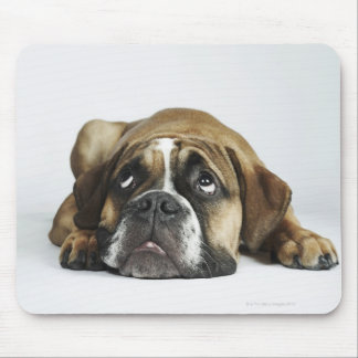 Portrait of Dorset Old Tyme Bulldog Mouse Mat