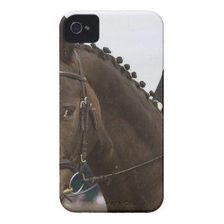 portrait of dressage horse iPhone 4 cases