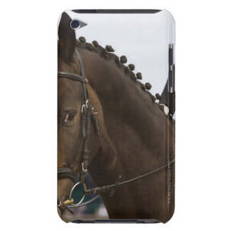 portrait of dressage horse iPod touch case