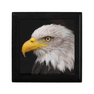 Portrait of eagle gift box