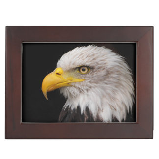 Portrait of eagle keepsake box
