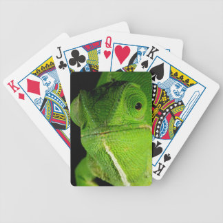 Portrait Of Flap-Necked Chameleon Bicycle Playing Cards