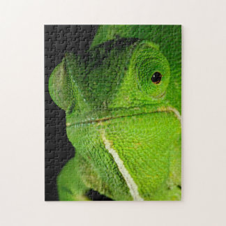 Portrait Of Flap-Necked Chameleon Jigsaw Puzzle