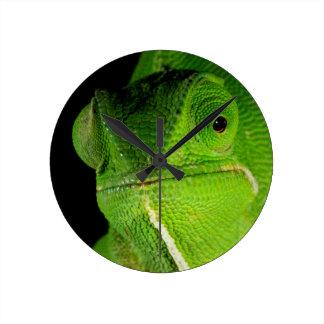 Portrait Of Flap-Necked Chameleon Round Clock