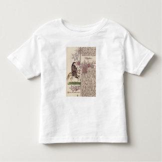 Portrait of Geoffrey Chaucer  facsimile from Tshirt
