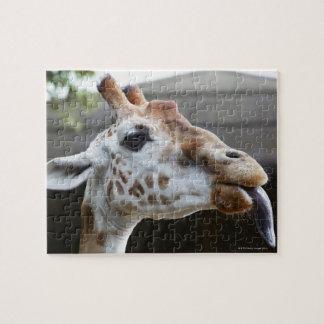 Portrait of Giraffe (Giraffa camelopardalis) Jigsaw Puzzle