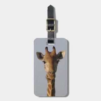 Portrait of Giraffe (Giraffa camelopardalis) Luggage Tag