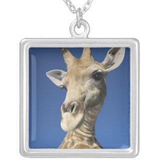 Portrait of Giraffe (Giraffa Camelopardalis) Square Pendant Necklace