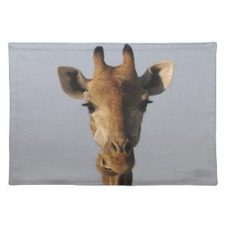 Portrait of Giraffe (Giraffa camelopardalis) Placemat