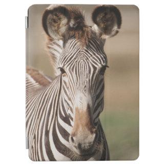 Portrait of Grevy's Zebra iPad Air Cover