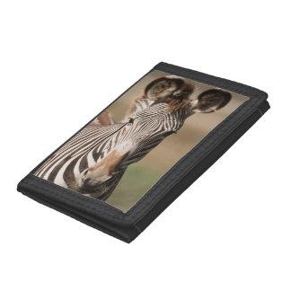 Portrait of Grevy's Zebra Tri-fold Wallets