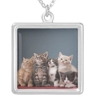 Portrait of group of kittens silver plated necklace