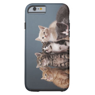 Portrait of group of kittens tough iPhone 6 case