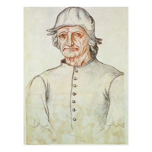 Portrait of Hieronymus Bosch Post Cards