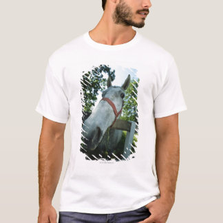 Portrait of Horse T-Shirt