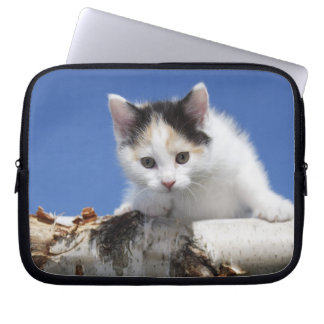 Portrait of Kitten Laptop Sleeve