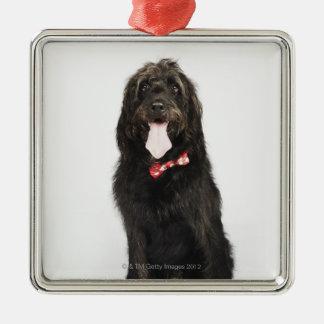 Portrait of Labradoodle dog Christmas Ornament