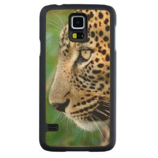 Portrait Of Leopard (Panthera Pardus) Carved Maple Galaxy S5 Case