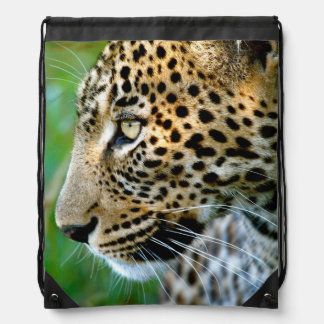 Portrait Of Leopard (Panthera Pardus) Drawstring Bag