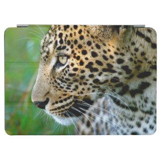 Portrait Of Leopard (Panthera Pardus) iPad Air Cover