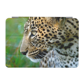 Portrait Of Leopard (Panthera Pardus) iPad Mini Cover