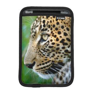 Portrait Of Leopard (Panthera Pardus) iPad Mini Sleeve