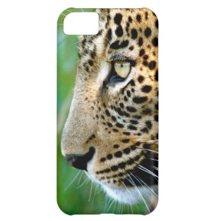 Portrait Of Leopard (Panthera Pardus) iPhone 5C Case
