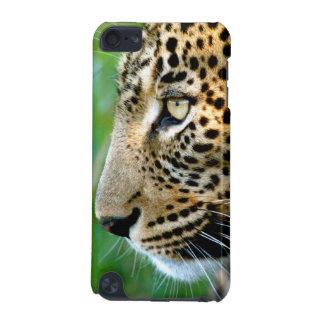 Portrait Of Leopard (Panthera Pardus) iPod Touch (5th Generation) Case