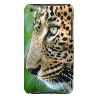 Portrait Of Leopard (Panthera Pardus) iPod Touch Case-Mate Case
