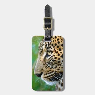 Portrait Of Leopard (Panthera Pardus) Luggage Tag