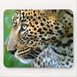 Portrait Of Leopard (Panthera Pardus) Mouse Mat