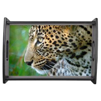 Portrait Of Leopard (Panthera Pardus) Serving Tray