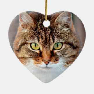 Portrait of Manx Cat Green-Eyed Christmas Ornament