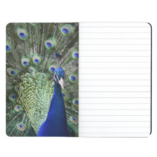 Portrait Of  Peacock With Feathers Out Journal