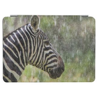 Portrait Of Plains Zebra (Equus Quagga) Standing iPad Air Cover