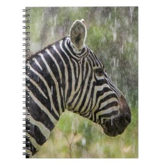 Portrait Of Plains Zebra (Equus Quagga) Standing Note Books