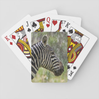 Portrait Of Plains Zebra (Equus Quagga) Standing Playing Cards