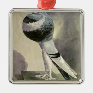 Portrait of Pouter Pigeon Christmas Ornament