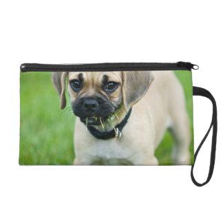 Portrait of puppy standing in grass wristlet purse