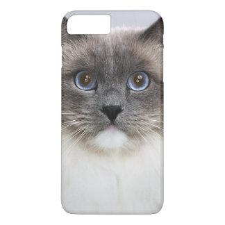 Portrait of Ragdoll cat iPhone 8 Plus/7 Plus Case