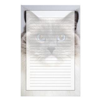 Portrait of Ragdoll cat Stationery