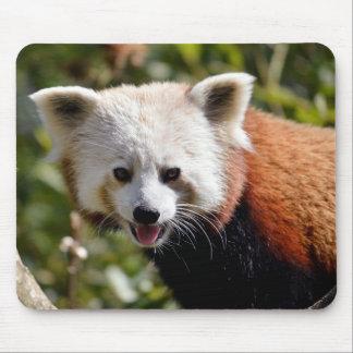 Portrait of red panda mousepad