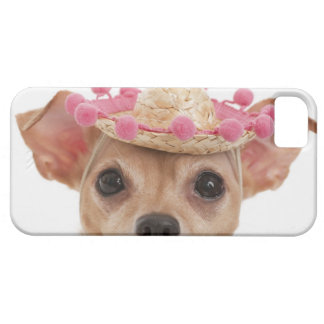 Portrait of small dog in sombrero barely there iPhone 5 case