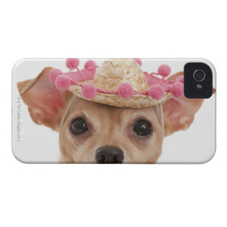 Portrait of small dog in sombrero Case-Mate iPhone 4 case