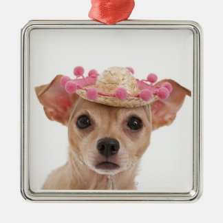 Portrait of small dog in sombrero christmas ornament